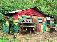 http://www.dreamstime.com/royalty-free-stock-image-rasta-hut-image553986
