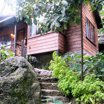 serendipity-holistic-resort-irish-town-blue-mountains2