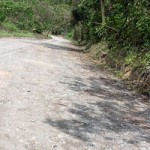 Road in Portland Jamaica
