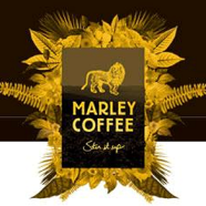 Stir It Up: Rohan Marley fulfills his father's farming dream with Marley Coffee enterprise