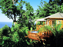 In Jamaica, Tree House Living & Fine Island Cuisine